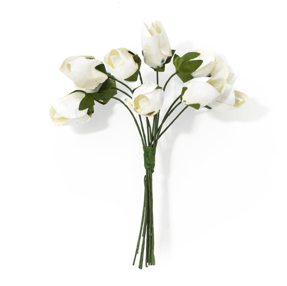 Kwiaty BUKIECIK Tulipany białe