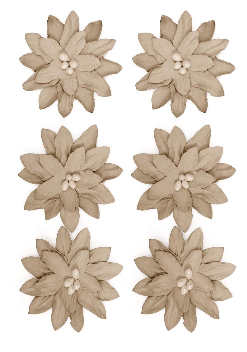 Kwiaty Dalia beżowe