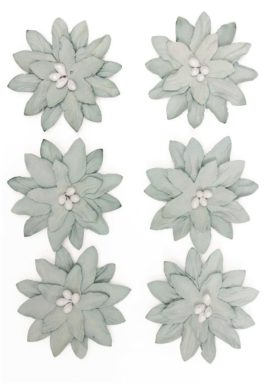 Kwiaty Dalia szare