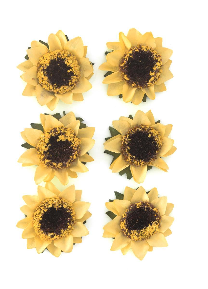 Kwiaty Słonecznik