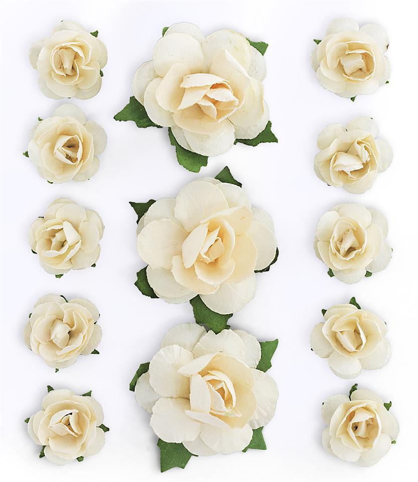 Kwiaty z łodyżką Róże brzoskwiniowy