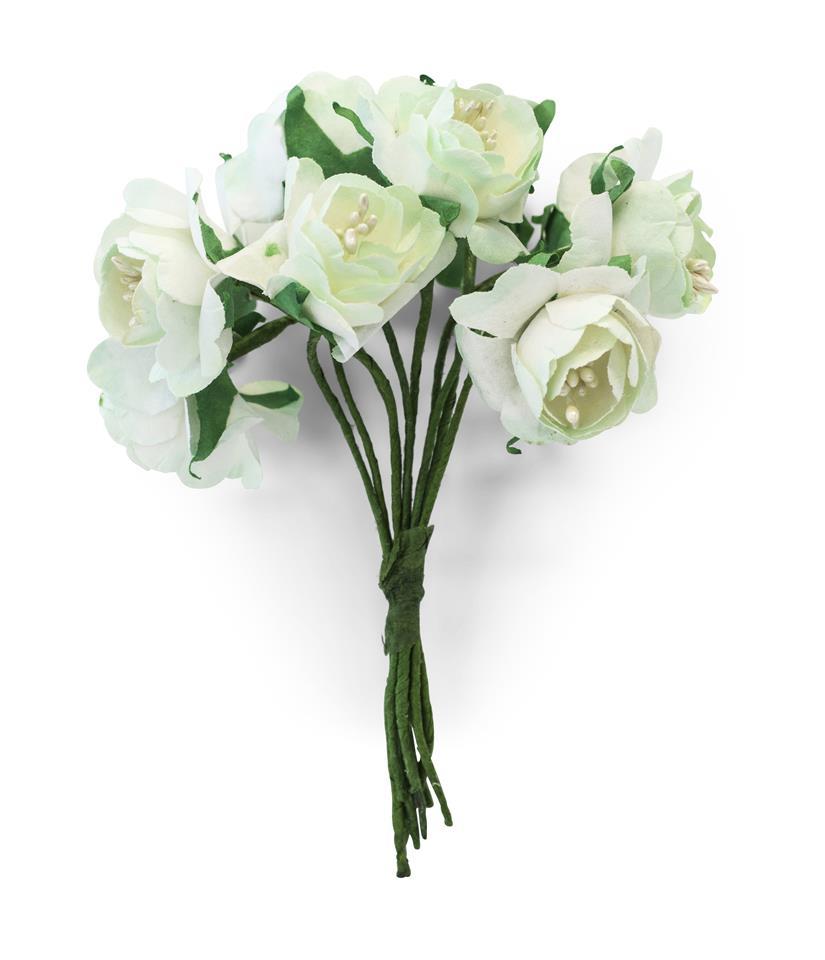 Kwiaty BUKIECIK Piwonia biały